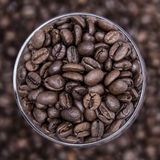 Coffee background. Grain of coffee in a round cup. Coffee background Royalty Free Stock Image