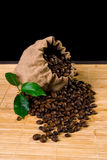Coffee bag and plant. Coffee seeds coming out from a burlap sack stock images
