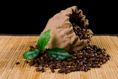 Coffee bag and plant. Coffee seeds coming out from a burlap sack stock photo