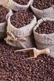 Coffee in bags royalty free stock photography