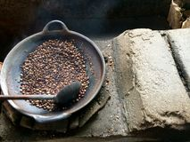 Roast coffee from Bali. Balis most expensive coffee. Kopi Luwak is coffee brewed on beans that has been through the digestion system of a civet – a cat like