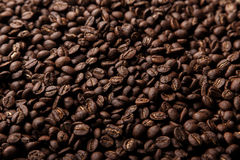 Coffee beams. Brown coffee beams background closeup stock images