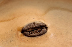Coffee bean. In cream coffee Royalty Free Stock Photo