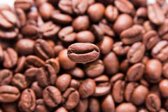 Coffee bean. Closeup with background of s Royalty Free Stock Image