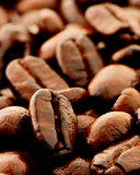 Coffee bean. Close-up of coffee bean show detail royalty free stock photos