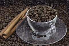 Coffee Bean Stock Photos