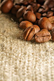 Coffee bean Royalty Free Stock Photos