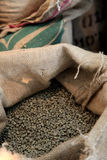 Coffee bean. Unroasted coffee beans in a burlap Stock Photography