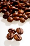 Coffee bean. On white background Stock Photo