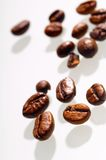 Coffee bean. On white background Stock Images