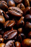 Coffee bean. On white background Royalty Free Stock Images