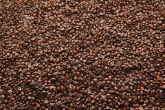 Coffee bean. Brown coffee caffeine bean / beans background Royalty Free Stock Photo