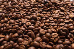 Coffee bean. Grains of coffee, illumination by the sun,  structure,  background Stock Photos