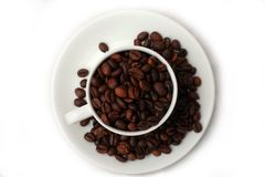 Coffee bean. On the coffee cup stock images