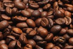 Coffee bean. Macro textured coffee beans background Stock Photos