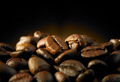 Coffee bean. Closeup on coffee bean with mood lighting Stock Image