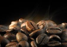 Coffee bean. Closeup on coffee bean with mood lighting stock photos