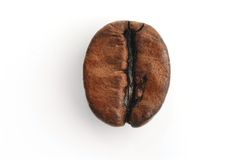 Coffee bean. A single bean macro shot. Take to show the detail and the character of the bean Royalty Free Stock Photos