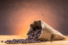 Coffee bean.  Royalty Free Stock Images