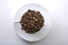 Coffee bean. In a white simple cup Stock Image