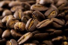 Coffee bean. Closeup shot on dark background Royalty Free Stock Photo