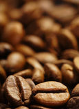 Coffee bean. Heap of roasted coffee bean Stock Photos