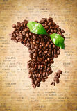 Coffee Bean Africa Royalty Free Stock Photos