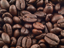 Coffee Bean Background 1. Coffee beans as a background with entire frame in focus Royalty Free Stock Photo
