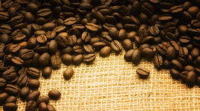 Coffee bean background. Background coffee fund for use in graphic design and make your text Stock Images