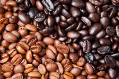 Coffee bean background Royalty Free Stock Photos