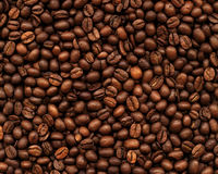 Coffee Bean Background. Pronounced texture of coffee beans, the high accuracy of the details Royalty Free Stock Image