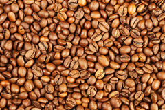 Coffee bean background. Background texture with a lot of brown coffee beans stock photography
