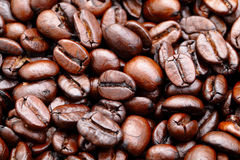 Coffee bean background. Heap of the coffee bean royalty free stock photo