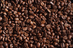 Coffee bean background. A natural brown coffee bean background Stock Photos