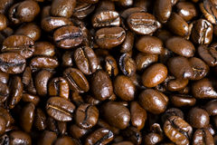 Coffee Bean Background Stock Photography