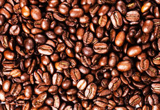 Coffee bean  background with copyspace for text. Coffee backgrou Royalty Free Stock Photography