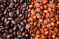 Coffee bean background Royalty Free Stock Image