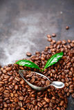 Coffee bean background over grey texture Stock Images