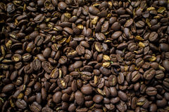 Coffee bean. Stock Photos