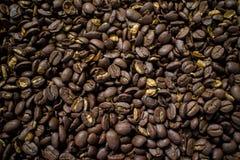Coffee bean. Stock Photos