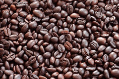 Coffee bean. S background with roasted natural seeds Stock Photography
