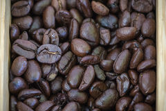 Coffee bean. S in a wooden box stock images