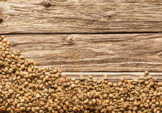 Coffee bean border on weathered wood. Coffee bean border with raw brown fresh dried beans arranged along the bottom of the frame on weathered rough textured Stock Photo