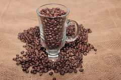 Coffee bean on burlap. Stock Images