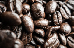 Coffee bean - caffeine Royalty Free Stock Images