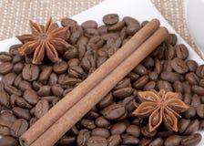 Coffee bean, cinnamon and anise Stock Photography