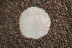 Coffee bean circle. White circle within brown roasted coffee beans Royalty Free Stock Photo