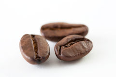 Coffee bean close up Stock Photography