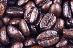 Coffee Bean Close Up Royalty Free Stock Photos