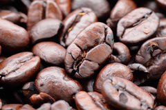 Coffee bean close up Stock Photo